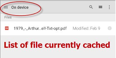 google-drive-files-cached