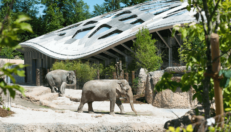 zurich-zoo-entry