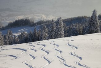 Powder tracks on Wildspitz