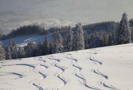 Powder tracks on Wildspitz
