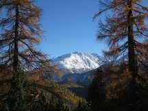Fall in the Swiss National Park