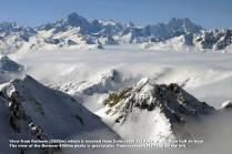 bernese-mountains