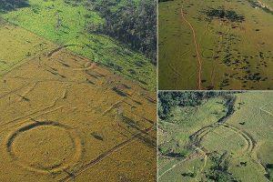 アマゾンで地上絵を思わせる450以上の円形溝が発見される