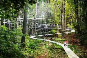 こんな森に行ってみたい!トルコでユニークなデザインの公園計画が進行中