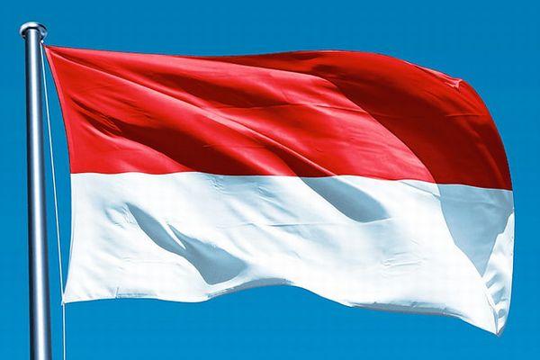 スポーツ大会でインドネシアの国旗が逆さまに印刷され、マレーシアに非難殺到