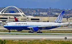 愛犬が旅客機の貨物室で死亡、飼い主が航空会社を非難