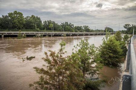 ハリケーンによる洪水で「人食いバクテリア」が発生、テキサス州で2人が死亡
