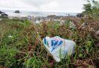 ボストンがレジ袋禁止の条例を制定、プラスチック削減に取り組む新たな都市へ