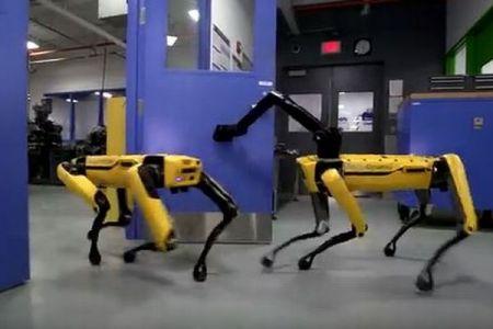「お先へどうぞ」仲間のために部屋のドアを開けるロボットがユニーク