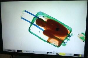 スーツケースに子供を入れて入国させた父親の判決、罰金刑のみに