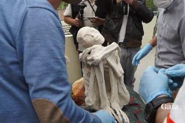 これ本当?!ペルーで発見された3本指のミイラ、DNA検査が行われ物議を醸す