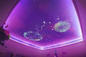 娘の部屋をディズニー風にデコレーション、天井に花火も映る寝室がスゴイ