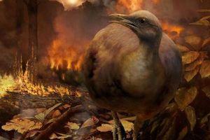 隕石による大量絶滅を生き延びたのは、地上で暮らす鳥の先祖だった:英研究