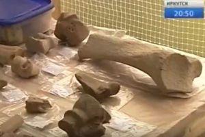 ユーラシア北部で最古のホモサピエンスか?露で発見された骨に注目が集まる