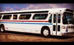 改造された1966年型の古いバス、驚くほど素敵な家に生まれ変わる