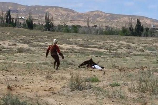 調教されていたイヌワシが突然、8歳の少女を襲う、その映像がショッキング
