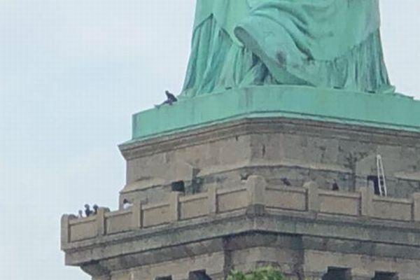 トランプ政権への抗議が目的か?自由の女神の足元に登った女性が確保される