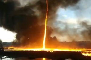 渦を巻き上空に立ち昇る炎、英で撮影された火災旋風の映像が恐ろしい
