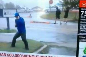 ハリケーンの暴風に耐えるレポーター、背後を男性が普通に歩く動画がユニーク