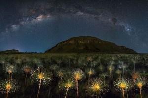 息を飲むほど美しい観光地の姿を捉えた写真コンテスト、優勝作品が発表