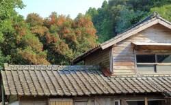 日本の空き家が無料で手に入る!海外メディアが話題に