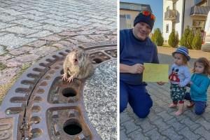 かわいい通報者から感謝の印も!太っちょネズミの救出劇に癒される