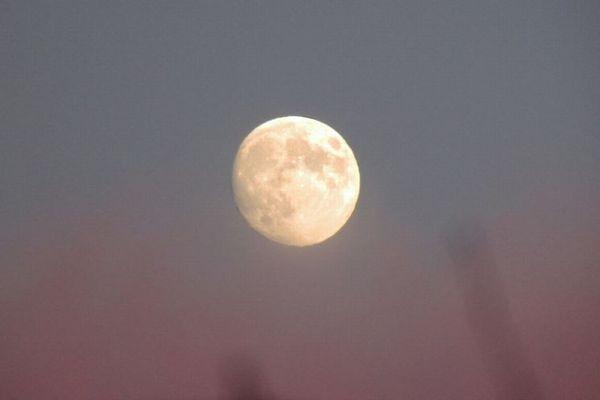 4月19日はピンクムーン!美しい満月を見ると恋愛運が上がるかも?