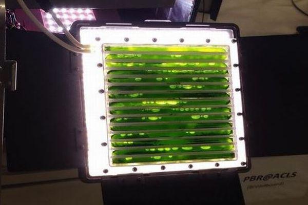 二酸化炭素を酸素へ変換する藻類を使った装置が、ISSに運搬される