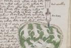 """性についての指南も?世界で最も謎めいた文書""""ヴォイニッチ手稿""""の謎を解明か"""