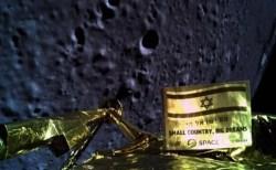 月に生きた生命体が存在している可能性!クマムシの生命力に期待