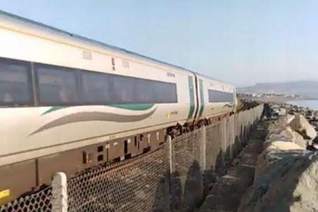 列車が大好きなワンコ、毎朝同じ時刻に競争する姿がユニーク