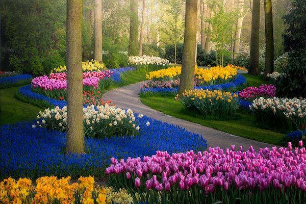 ロックダウンで観光客が消えた「世界一美しい花園」の風景