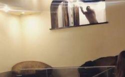 ロシア人の男性が窓からプールに飛び込む映像、失敗する様子が痛すぎる!