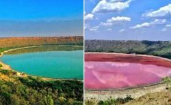 インドでクレーターにできた湖が一晩でピンクに変色、人々もびっくり