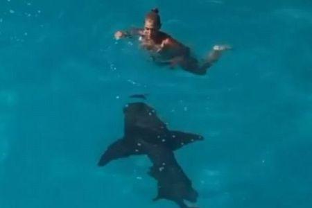 海に落ちた瞬間、目の前にサメが出現、女性をとらえた映像が恐ろしい