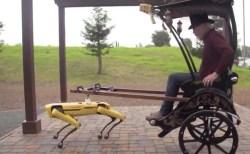 最先端の四足歩行ロボットに人力車を引かせる動画がユーモラス