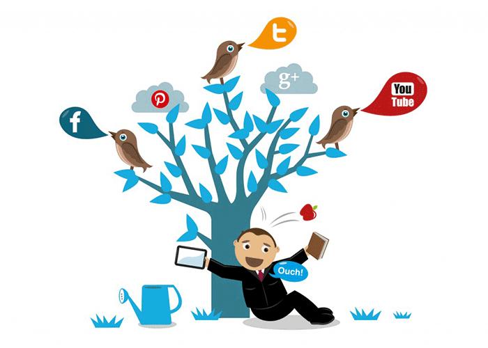 For SEO use social media