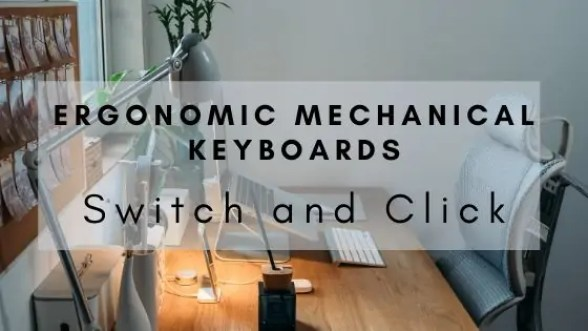 ergonomic mechanical keyboards on the switch and click