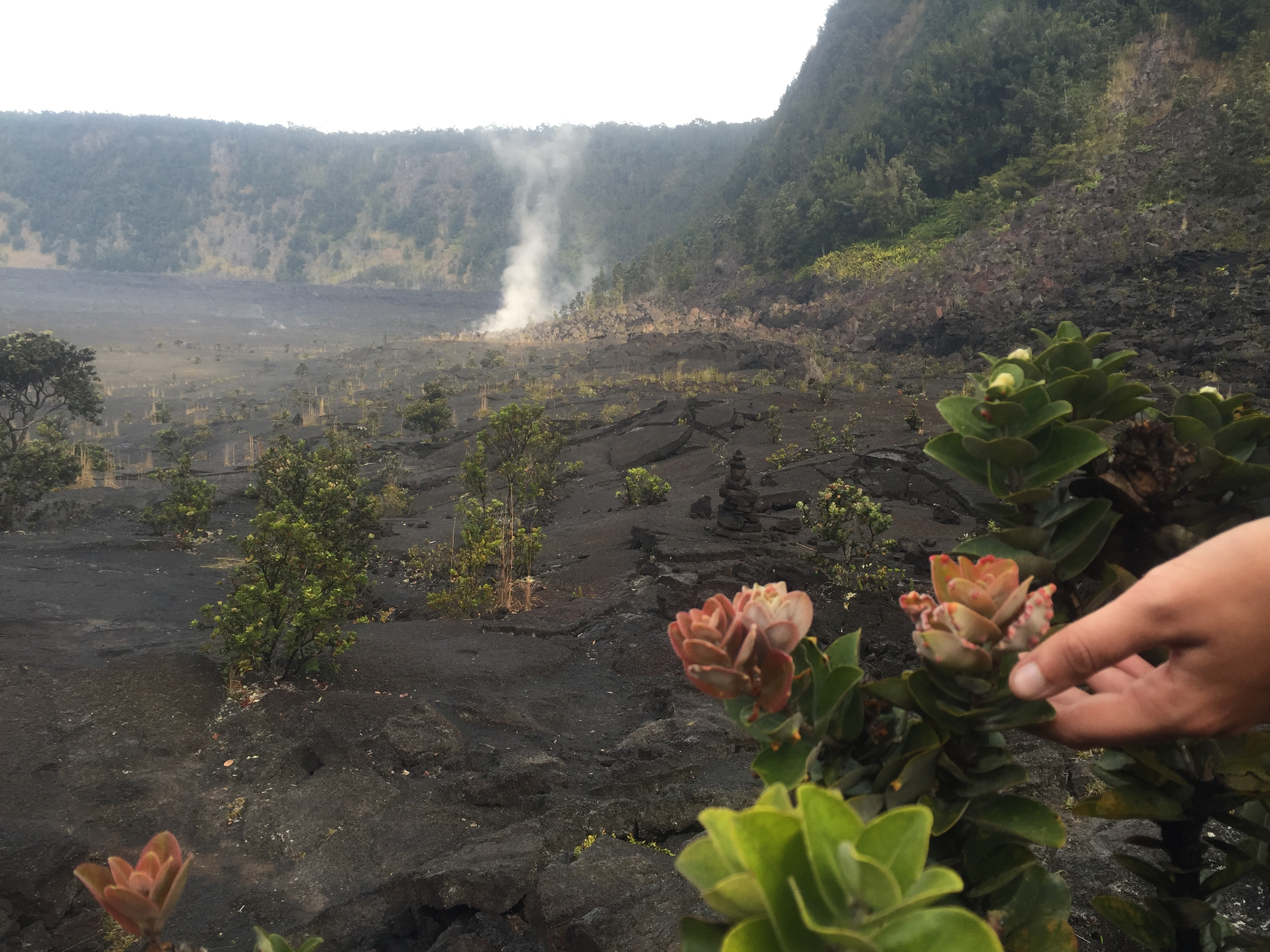 Hawai'i Volcanoes National Park Video