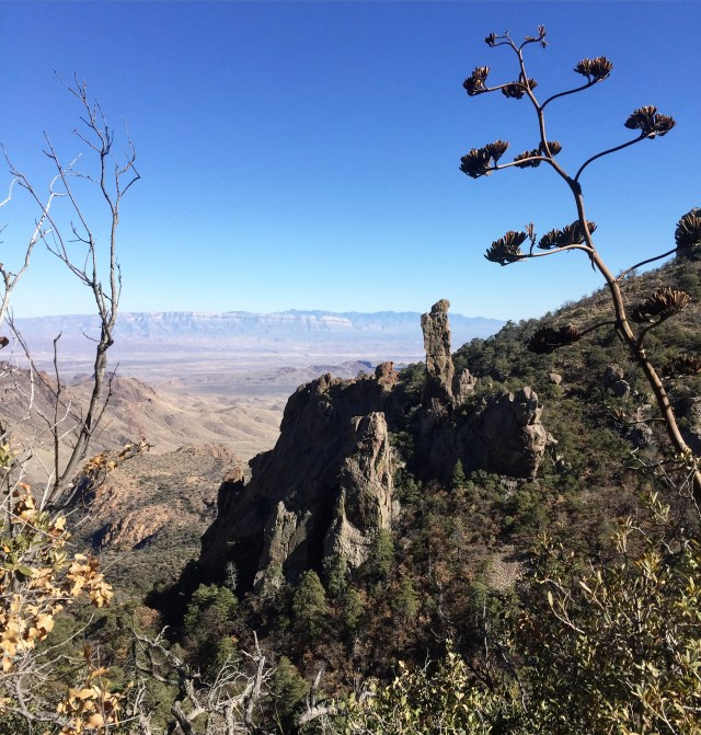 Big Bend National Park video