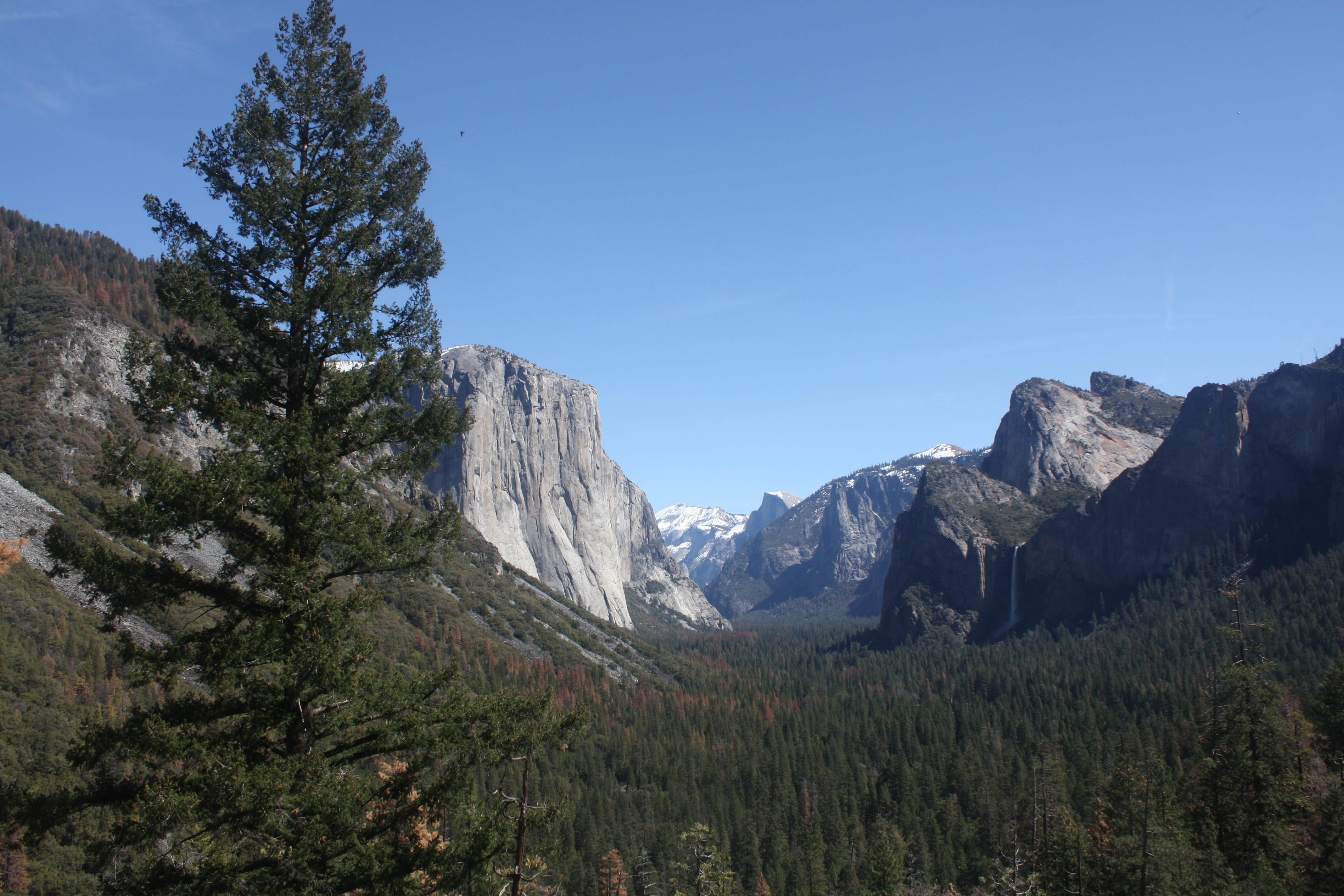 How to Maximize Your Time at Yosemite (Without Feeling Rushed!)