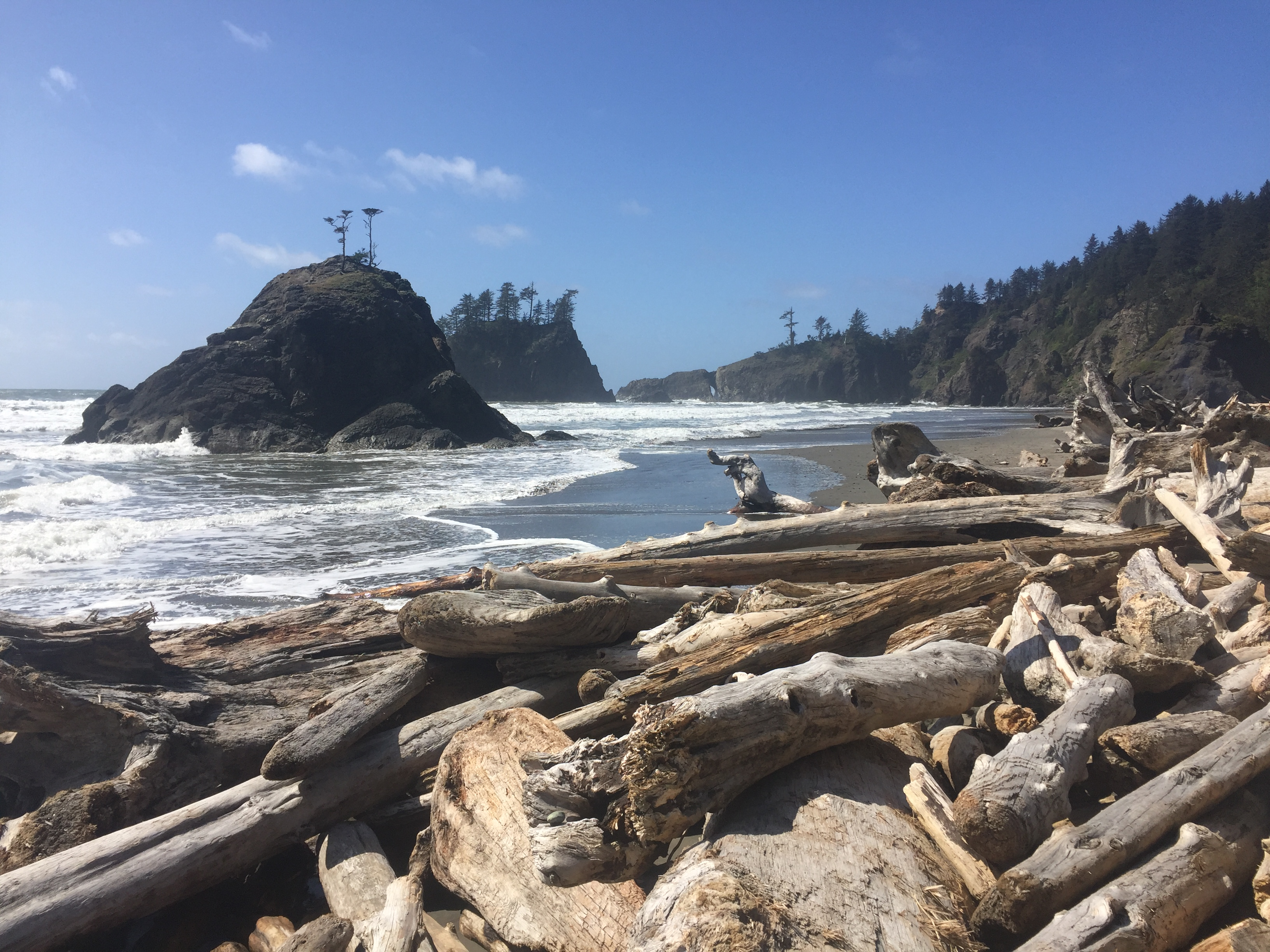 6 Spring Days in Olympic National Park
