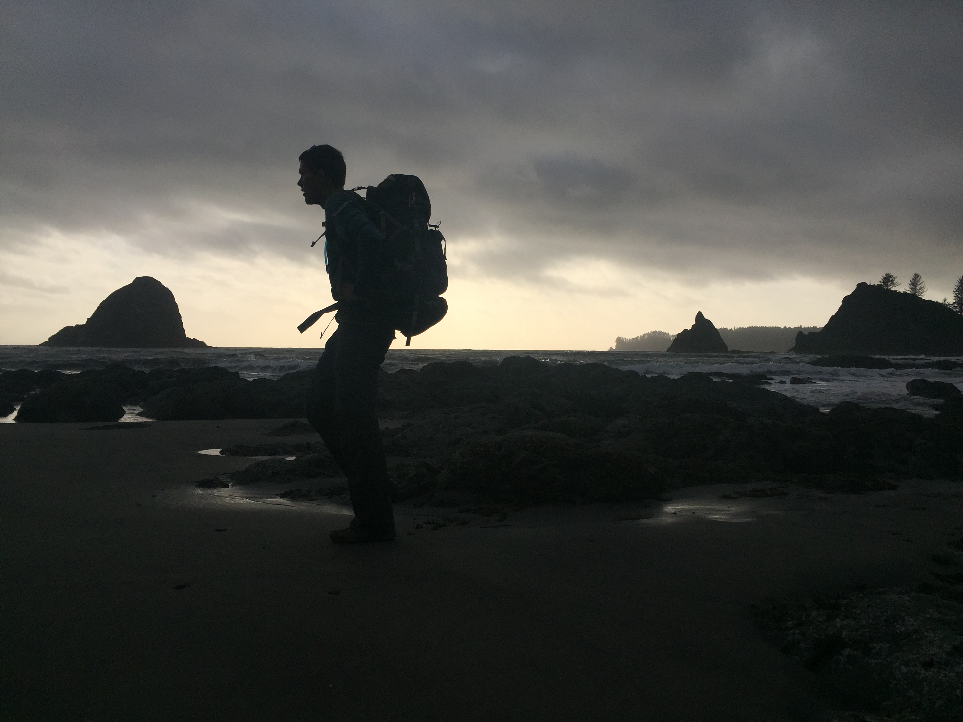 OLYMPIC NATIONAL PARK VIDEO: Diversity for days