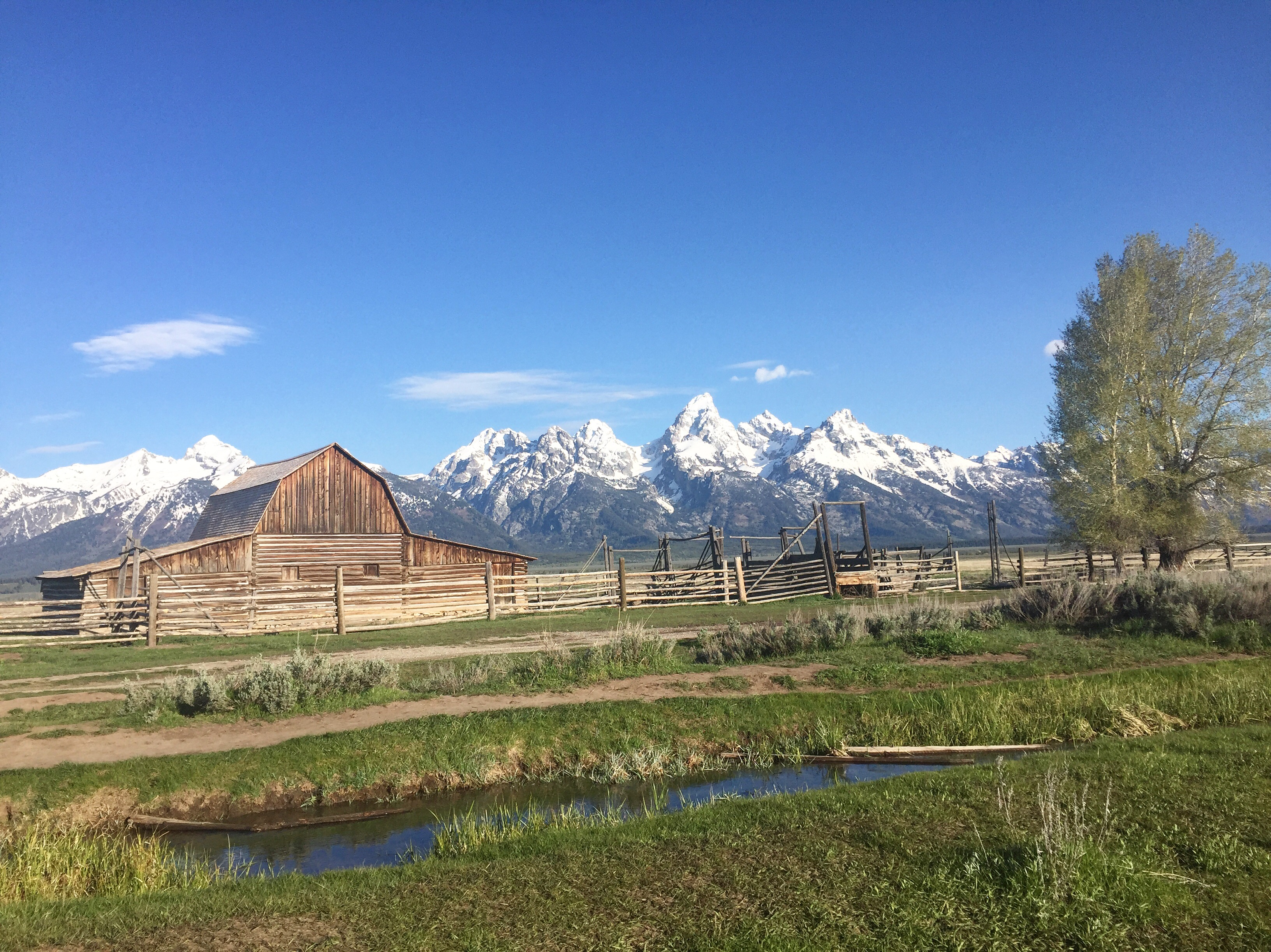 The Instagram Illusion (True Stories from Grand Teton National Park)