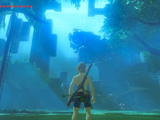 link standing facing the trial of the sword