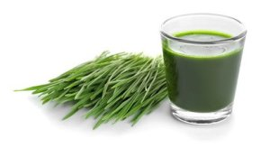 Wheatgrass for improving body odor