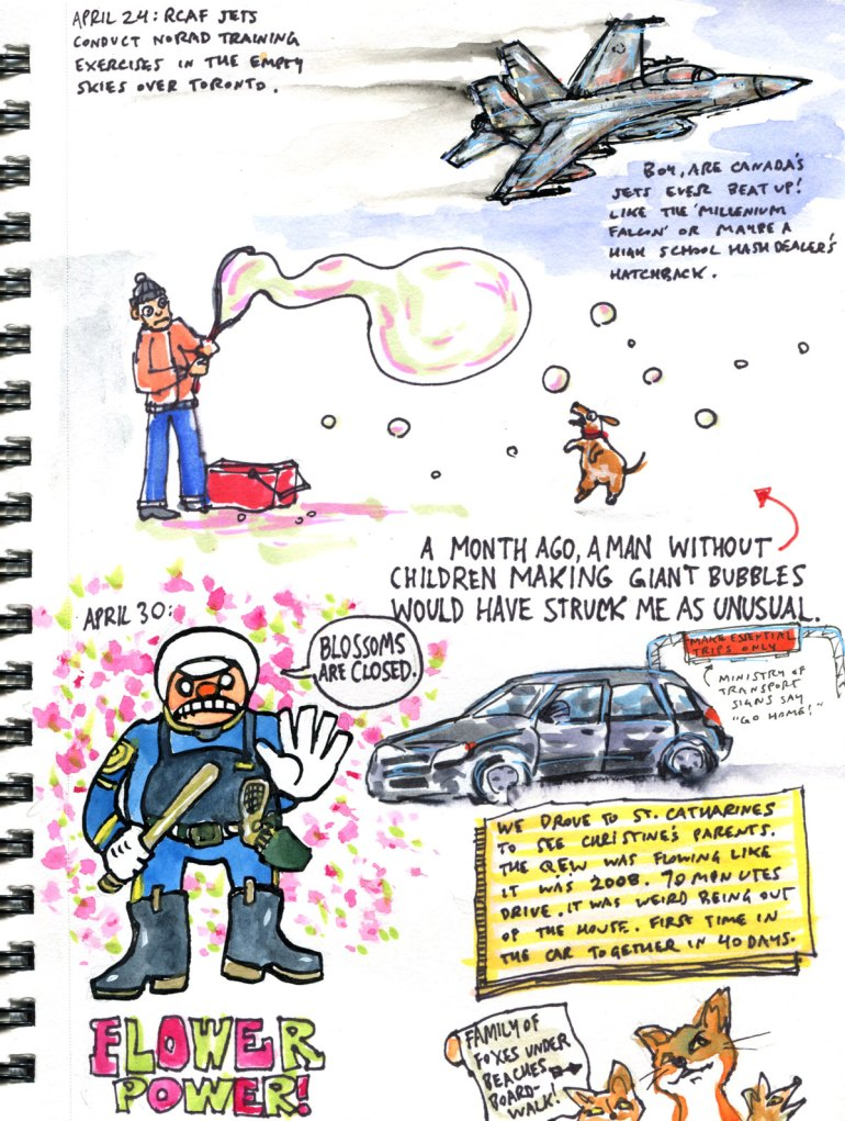 My Pandemic Diary page 41 RCAF flyoever, bubble man, flower power, road trip, foxes