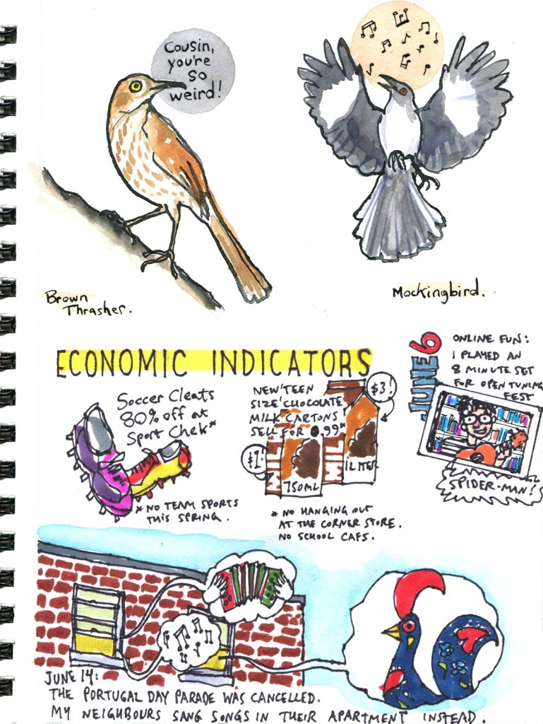 My Pandemic Diary page 57 brown thrasher,mockingbird,soccer,chocolate milk,Open Tuning,Portugal Day