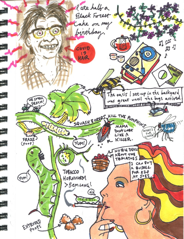 My Pandemic Diary 2 page 10: Hornworks, cake overdose, squash borers