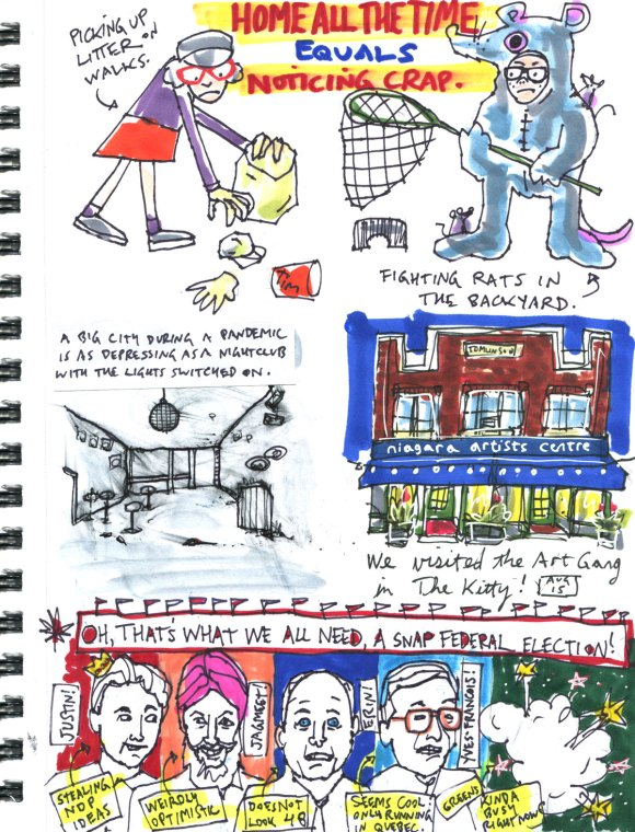 My Pandemic Diary part 3 Page 15 litter, rats, NAC, election